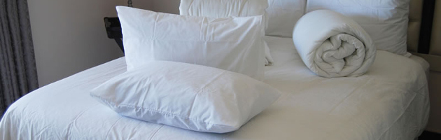 silk pillow inner cotton percale